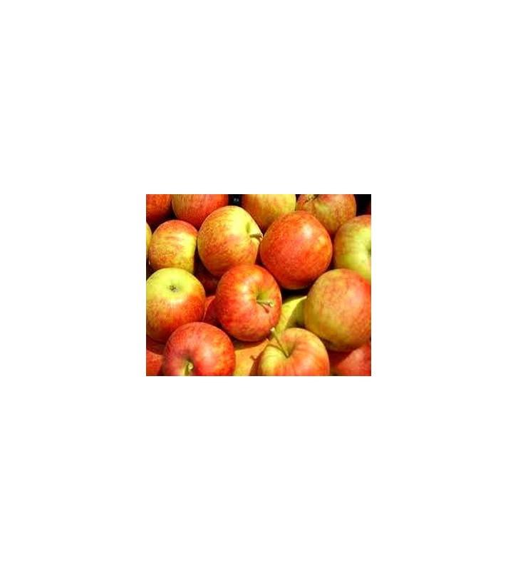 Pomme Jonagored Vrac 1 Kg