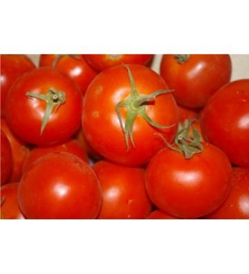 Tomate ronde 1 Kg