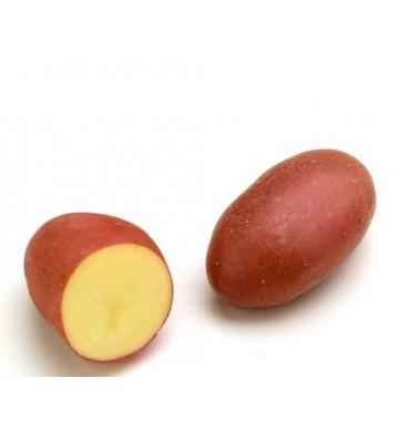 Pomme de Terre Chérie Filet...