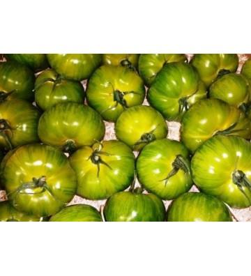 Tomate ronde - Green Zebra...