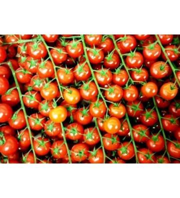 Tomates Cerises Grappe 500grs