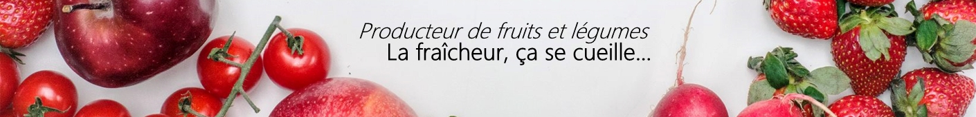 Producteur de fruits et légumes à Reims