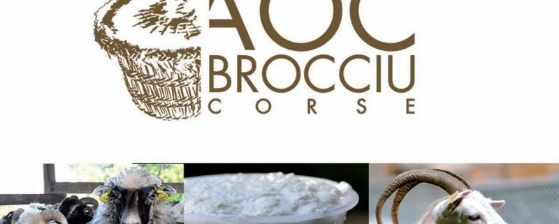 AOC Brocciu Corse illustration