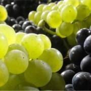 Raisins blancs et noirs
