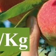 Bandeau pomme en promotion à 1 euro 20