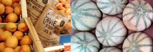 Melons et Abricots de la Drôme