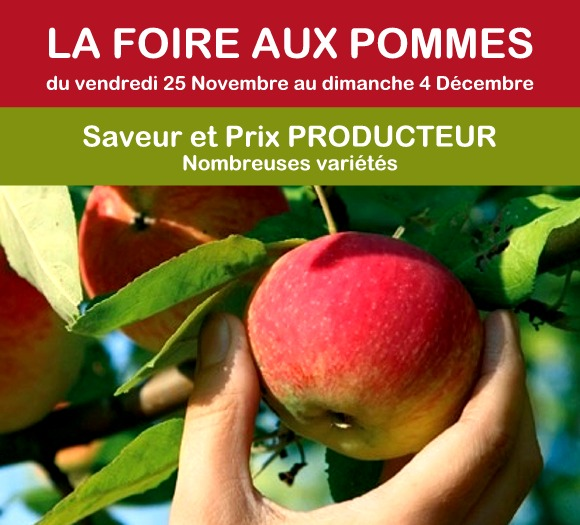 Bandeau Foire aux pommes