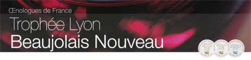 bandeau-lyon-beaujolais-nouveau-2014