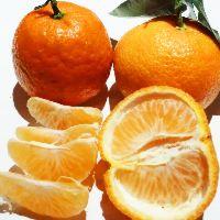 clementine_bio