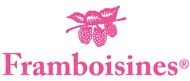 Logo Framboisines rose
