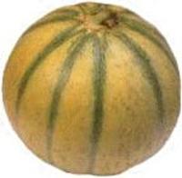 melon_200
